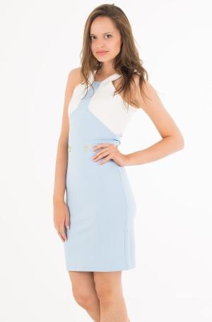 Suknelė Eeva-1