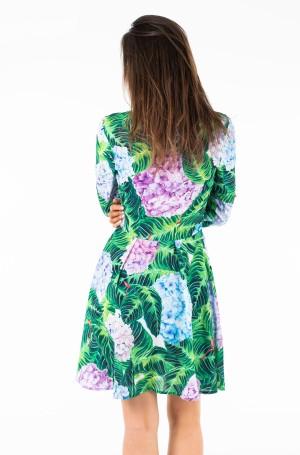 Suknelė Clementine-2