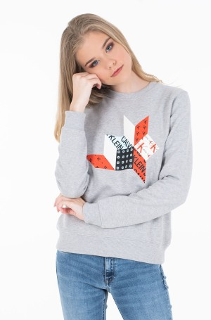 Dressipluus QUILT GRAPHIC CREW NECK-1