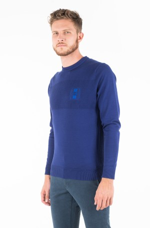 Džemperis PLACED STRUCTURE BRANDED SWEATER-1