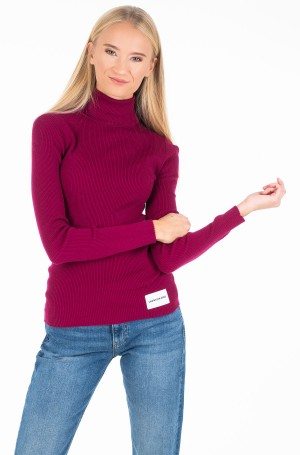 Sviiter ICONIC RIB TURTLE NECK-1