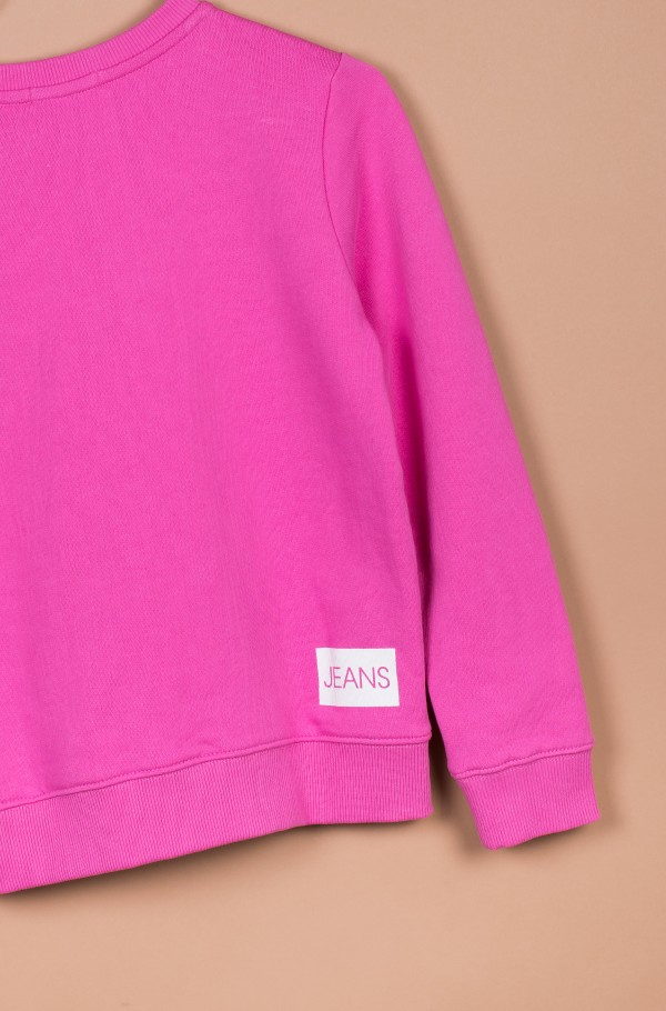 INSTITUTIONAL LOGO SWEATSHIRT-hover