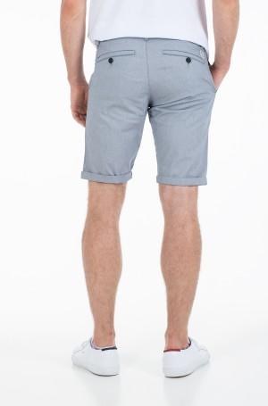 Shorts 1021275-2