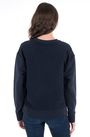 Dressipluus ICON REG C-NK GRAPHIC SWEATSHIRT-2