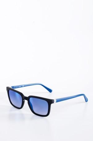 Sunglasses 6933-2