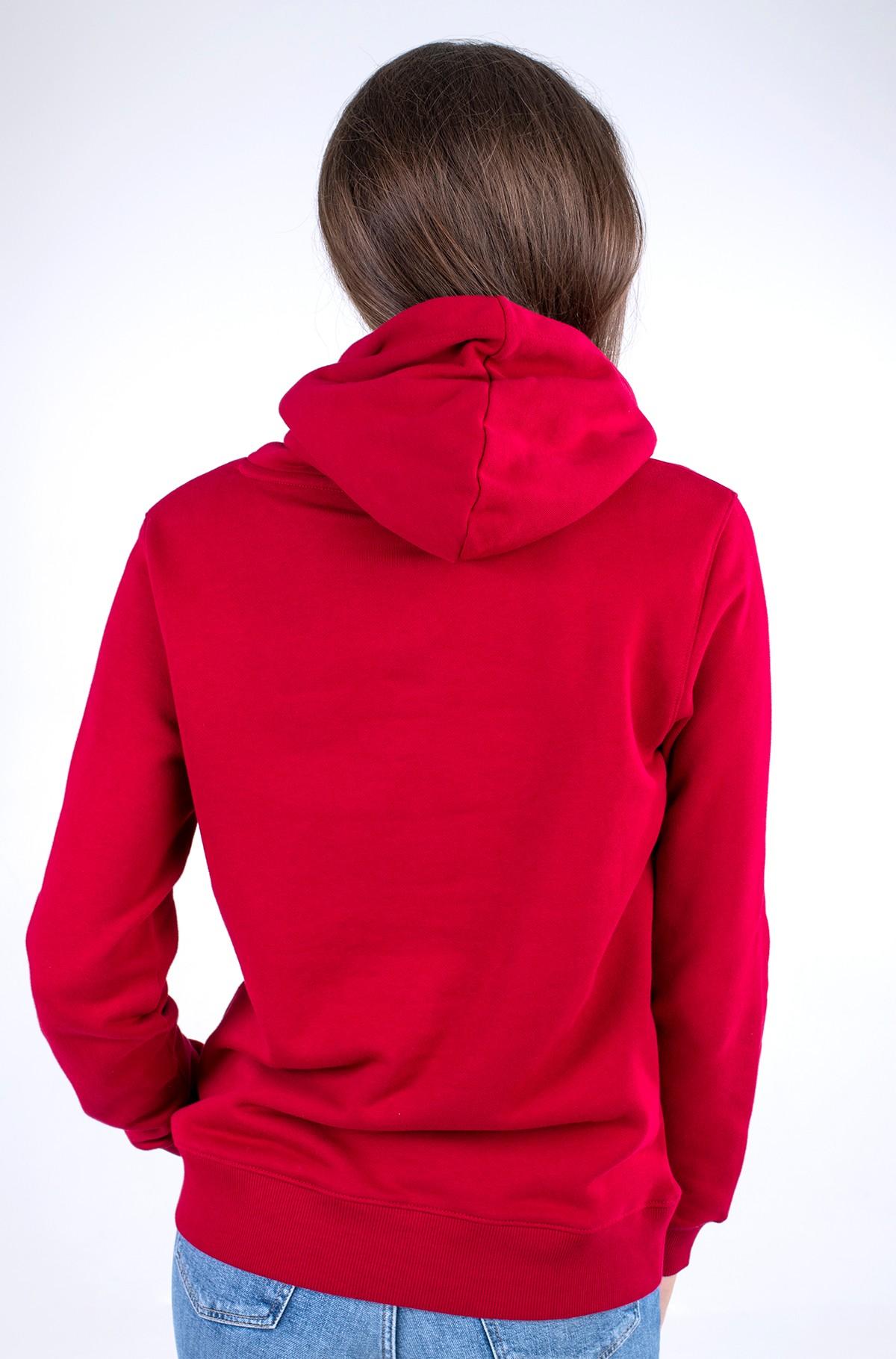 Sporta džemperis REGULAR MOTION FLAG HOODIE-full-2