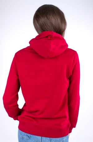 Sporta džemperis REGULAR MOTION FLAG HOODIE-2