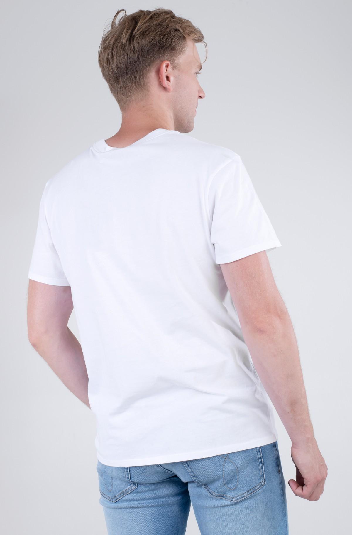 Marškinėliai UPSCALE PALM PRINT SS TEE-full-2