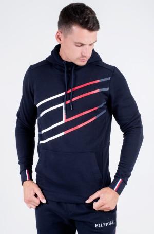 Sporta džemperis GRAPHIC HOODY-1